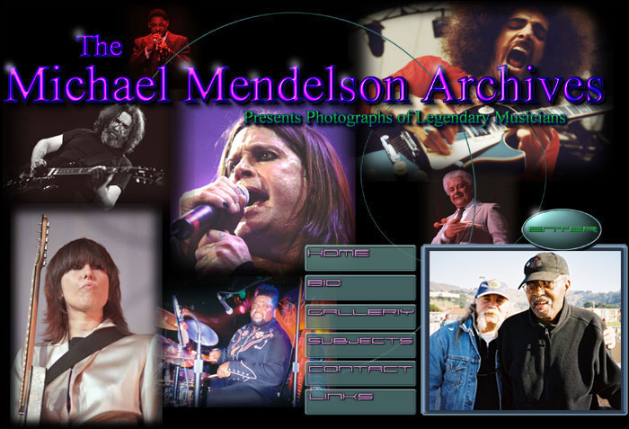 The Michael Mendelson Archives